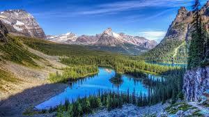 Rocky Mountain Range Map Rocky Mountain National Park Information U0026 Facts Tiverton