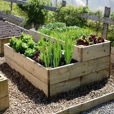 Raised Gardens For Beginners - raised bed vegetable garden layout dunneiv org