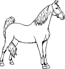good horse coloring page wecoloringpage