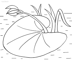 printable lily pad coloring pages kids cool2bkids
