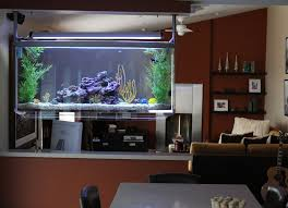 Beautiful Home Aquarium Designs Pictures Amazing Home Design - Home aquarium designs