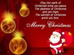 merry everyone harnesslink