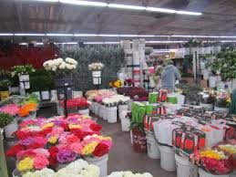 los angeles florist scholarships in floriculture and horticulture american floral