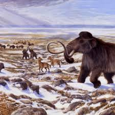 woolly mammoth u2013 research analysis u2013 conversation