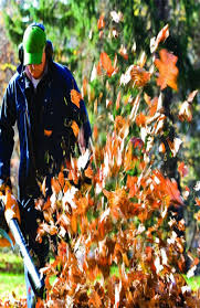 Fall Cleanup Landscaping by Fall Clean Up Distinctive Landscaping