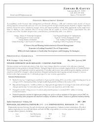 resume exle account executive resume channel sales executive resume sle 28 images sales account