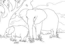 Coloriage  Eléphants de savane dAfrique  Coloriages à imprimer