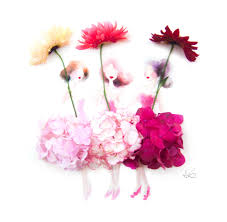 real flowers illustration artist draws dresses using real flowers
