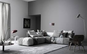 salon avec canapé gris canapé gris 50 designs en nuances grises pour votre salon