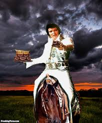 Horse Birthday Meme - elvis on a horse with a birthday cake pictures freaking news