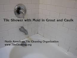 How To Remove Bathroom Mold Clean Mold In Bathroom Akioz Com