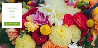 Flower Shops In Suffolk Va - massapequa florist flower delivery by flower after flower