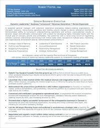 senior executive resume exles senior executive resume senior level resume sles senior executive