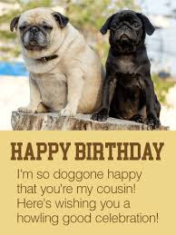 happy to have you as my cousin happy birthday card birthday