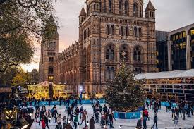 the history museum rink to sparkle with swarovski