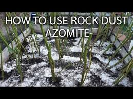 Rock Dust Gardening Side Dress Your Plants With Azomite Rock Dust To Remineralize Soil