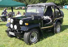 mitsubishi jeep cranleigh lions classic car show surrey aug 16th