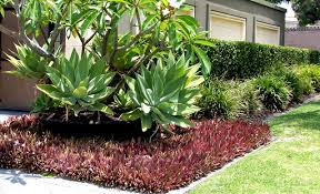 Garden Ideas Perth Gardening And Landscaping For Perth Homes Ventura Lifestyle