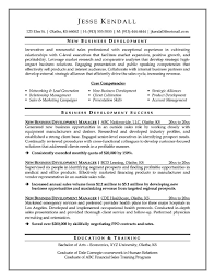 Sample Business Development Resume by Sample Resume For Business Development Executive Job