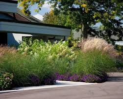 special ideas grasses for landscaping bistrodre porch and