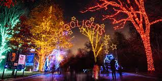 Pictures Of Christmas Lights by Zoolights Smithsonian U0027s National Zoo