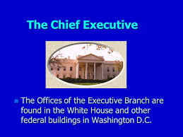 Role Of Cabinet Members The Roles Of The President Role Chief Of State N Acts As Example