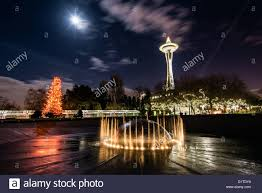 international fountain at night with christmas tree and space