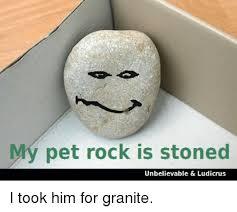 Pet Rock Meme - my pet rock is stoned unbelievable ludicrus i took him for granite