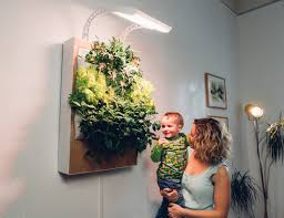 get your grow on with this easy indoor garden system brit co