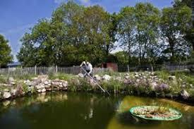 Backyard Fish Ponds by Raising Fish For Food Backyard Fish Farming For Survival Farm