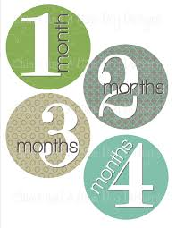 monthly onesie stickers boys aqua blue green and gray perfect