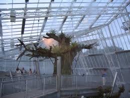 Ohio Botanical Gardens Nexus Greenhouse Systems Projects Cleveland Botanical Gardens
