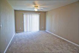 1 Bedroom Apartments For Rent Columbia Mo 274 Pet Friendly Apartments For Rent In Columbia Mo Zumper