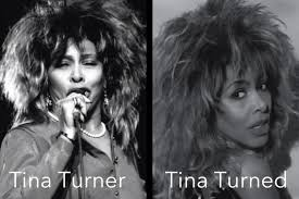 Tina Meme - tina turner tina turned name puns know your meme