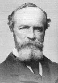 Armchair Philosopher American Philosophy