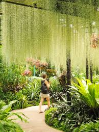 Botanical Gardens In Singapore by Singapore Photography Locations A Guide To The Best Photo Spots