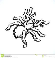 99 ideas spiderman printable pictures on emergingartspdx com