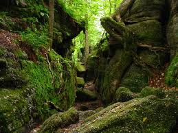 Iowa national parks images Ledges state park a fave place to go spend the day exploring jpg