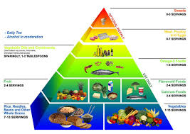top diet foods balanced diet food chart