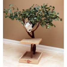 seedling lifelike cat tree