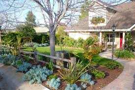 rustic landscaping ideas landscape modern with pazmany bros