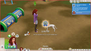 the sims 4 cats u0026 dogs pet training skill guide sims community