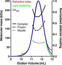 multi angle light scattering molecular mass determination from size exclusion chroma open i