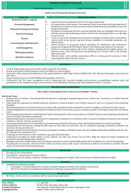 Personal Banker Job Description For Resume by Ca Resume Samples Chartered Accountant Resume Format Naukri Com