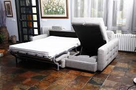 Sleeper Sofas San Diego Home Impressive Sleeper Sofa San Diego House Decor Amazing Best