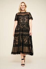 tea length dress camilla tea length dress plus size tadashi shoji