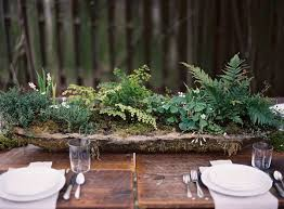 Potted Plants Wedding Centerpieces by Best 25 Fern Centerpiece Ideas On Pinterest Different Types Of