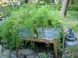 getting galvanized u2026in the garden flea market gardening