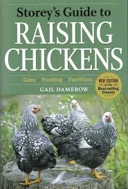 1031 best chickens images on pinterest raising chickens