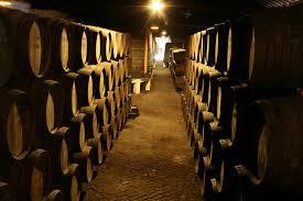 Wine Cellars Porto - porto walking tour portugal green walks